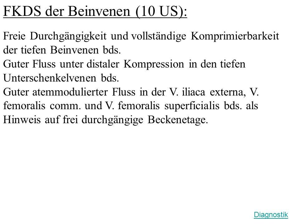 FKDS der Beinvenen (10 US): Freie Durchgängigkeit und vollständige Komprimierbarkeit der tiefen Beinvenen bds. Guter Fluss unter distaler Kompression