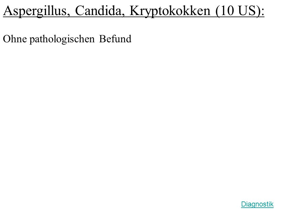 Aspergillus, Candida, Kryptokokken (10 US): Ohne pathologischen Befund Diagnostik