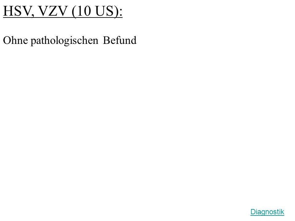 HSV, VZV (10 US): Ohne pathologischen Befund Diagnostik