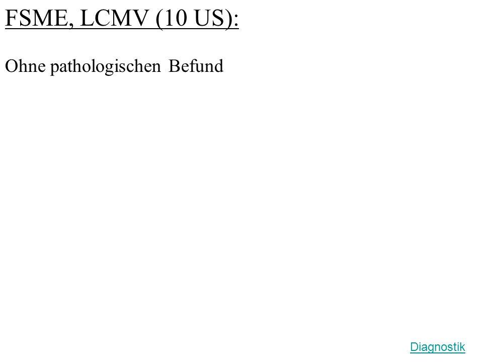 FSME, LCMV (10 US): Ohne pathologischen Befund Diagnostik