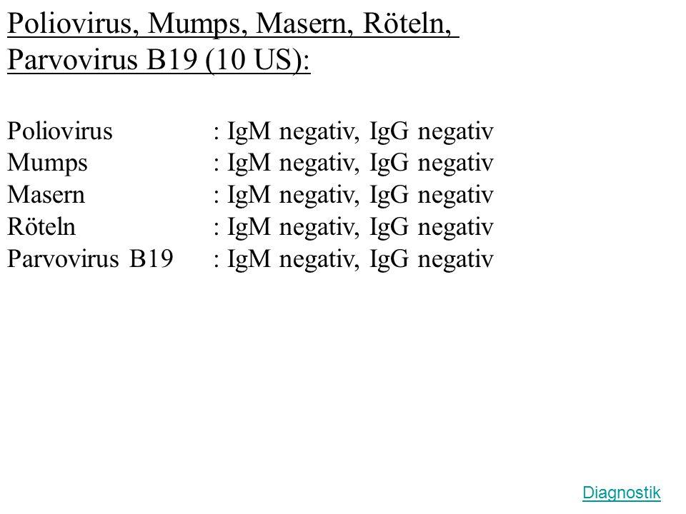 Poliovirus, Mumps, Masern, Röteln, Parvovirus B19 (10 US): Poliovirus : IgM negativ, IgG negativ Mumps : IgM negativ, IgG negativ Masern : IgM negativ, IgG negativ Röteln : IgM negativ, IgG negativ Parvovirus B19: IgM negativ, IgG negativ Diagnostik
