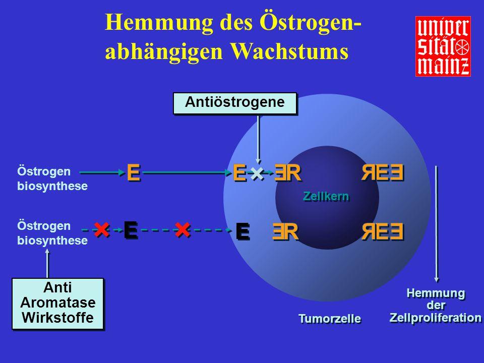 Tumorzelle Zellkern Hemmung der Zellproliferation Hemmung der Zellproliferation Antiöstrogene Anti Aromatase Wirkstoffe Anti Aromatase Wirkstoffe Hemm