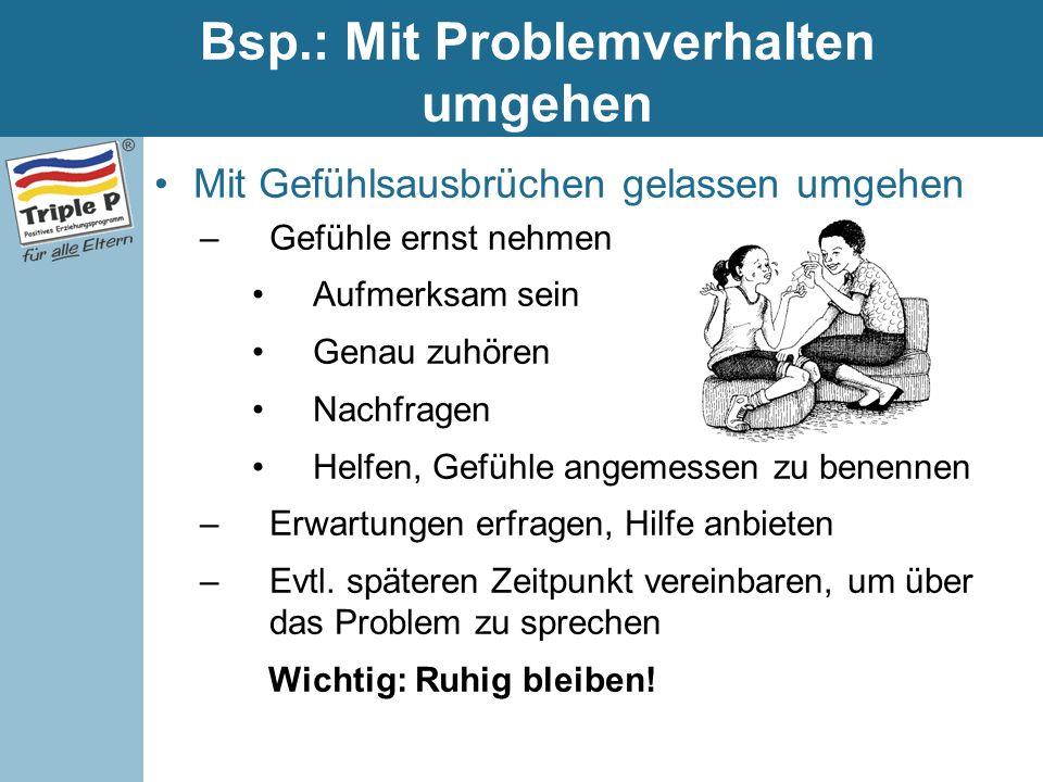 Bsp.: Mit Problemverhalten umgehen Mit Gefühlsausbrüchen gelassen umgehen –Gefühle ernst nehmen Aufmerksam sein Genau zuhören Nachfragen Helfen, Gefüh