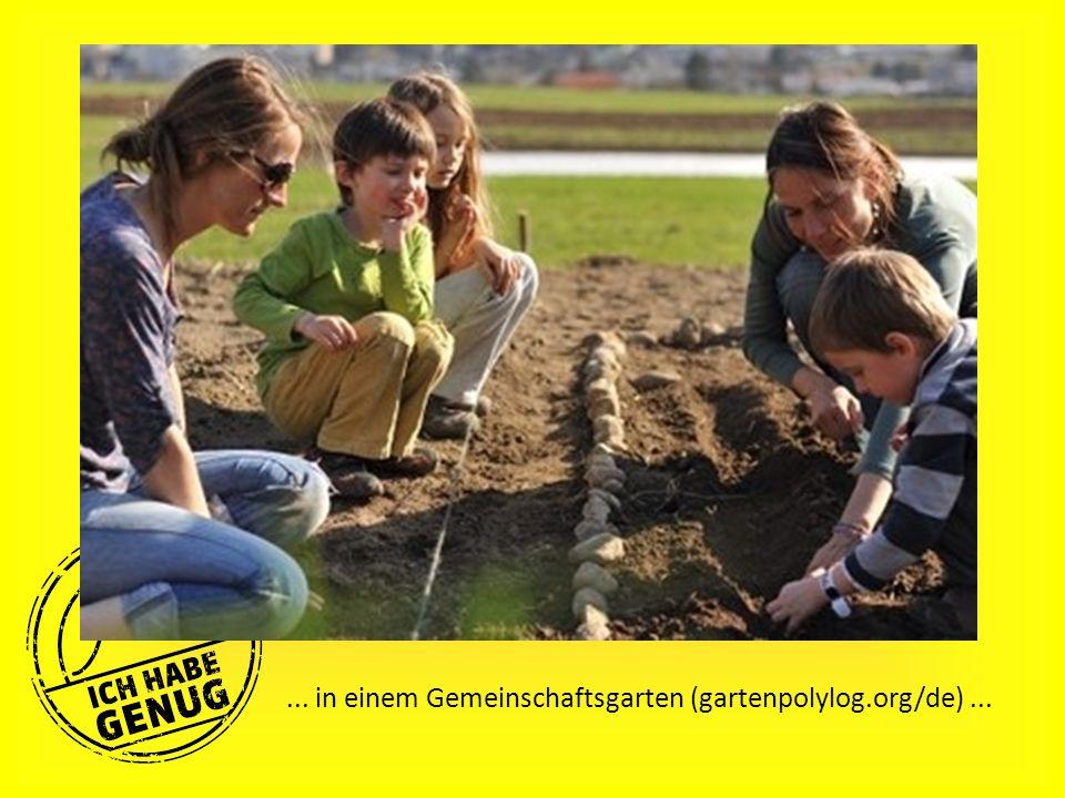 ... in einem Gemeinschaftsgarten (gartenpolylog.org/de)...