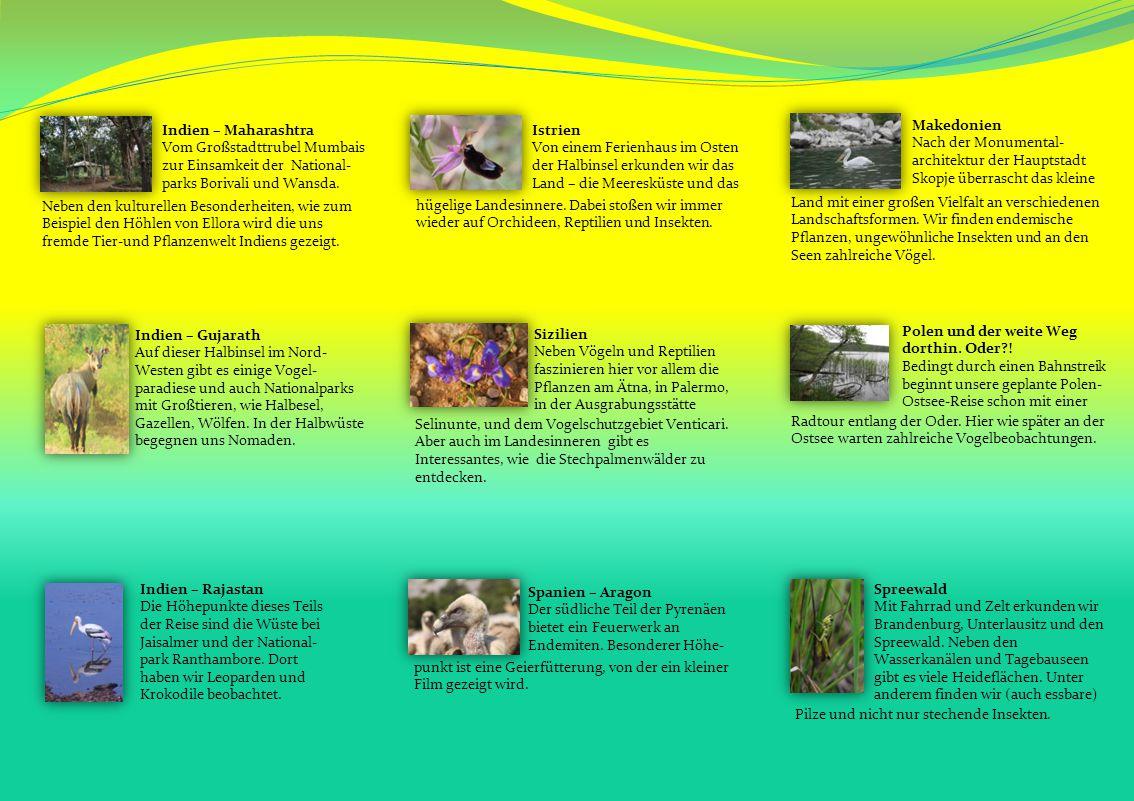Indien – Maharashtra Vom Großstadttrubel Mumbais zur Einsamkeit der National- parks Borivali und Wansda.