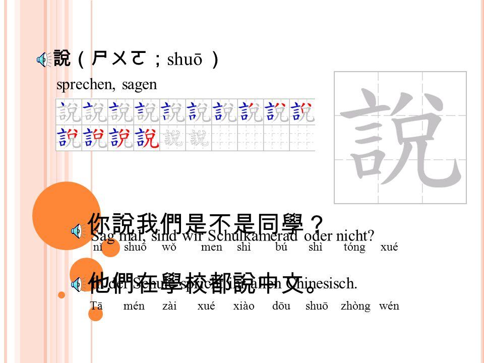會(ㄏㄨㄟˋ; huì ) 你會不會說中文? nǐ huì bú huì shuō zhòng wén 我們都學會了說中文。 wǒ mén dōu xué huì le shuō zhòng wén Kannst du Chinesisch sprechen.