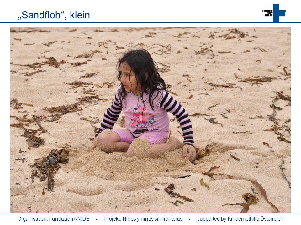 Organisation: Fundacion ANIDE - Projekt: Niños y niñas sin fronteras - supported by Kindernothilfe Österreich Sandfloh, klein