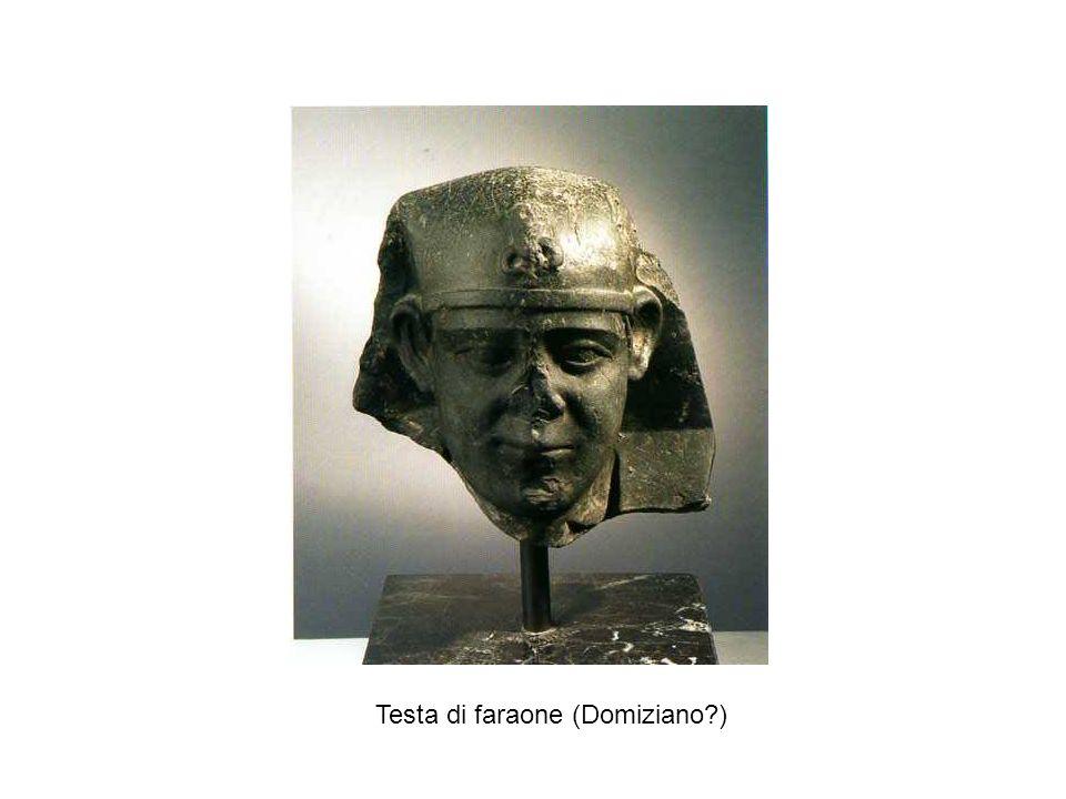 Testa di faraone (Domiziano )