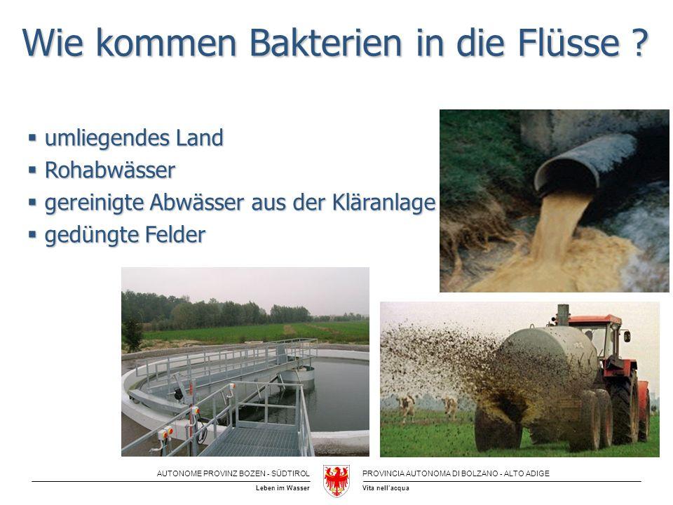 AUTONOME PROVINZ BOZEN - SÜDTIROLPROVINCIA AUTONOMA DI BOLZANO - ALTO ADIGE Vita nellacquaLeben im Wasser Wie kommen Bakterien in die Flüsse ? umliege