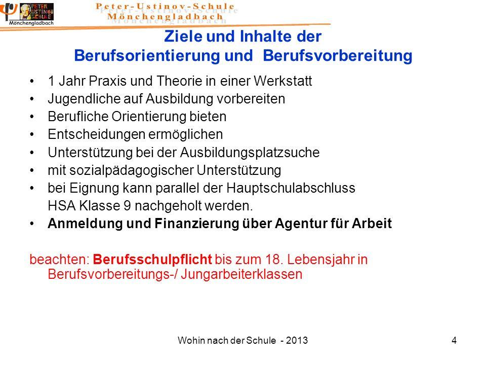 Wohin nach der Schule - 20134 Ziele und Inhalte der Berufsorientierung und Berufsvorbereitung 1 Jahr Praxis und Theorie in einer Werkstatt Jugendliche
