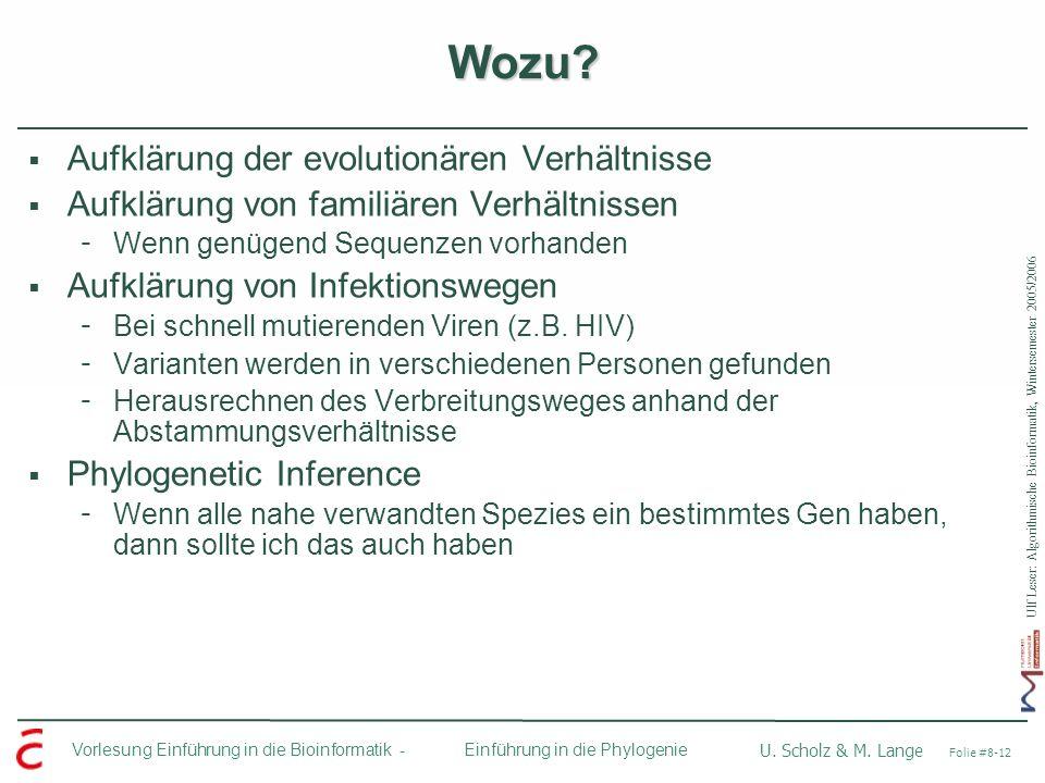 Ulf Leser: Algorithmische Bioinformatik, Wintersemester 2005/2006 Vorlesung Einführung in die Bioinformatik - U. Scholz & M. Lange Folie #8-12 Einführ