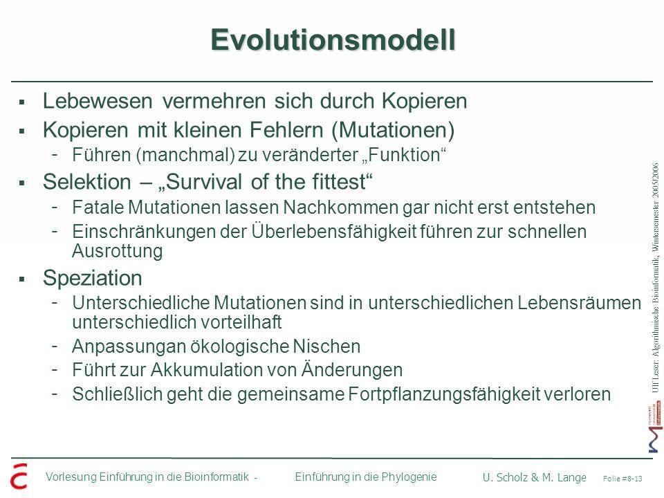 Ulf Leser: Algorithmische Bioinformatik, Wintersemester 2005/2006 Vorlesung Einführung in die Bioinformatik - U. Scholz & M. Lange Folie #8-13 Einführ