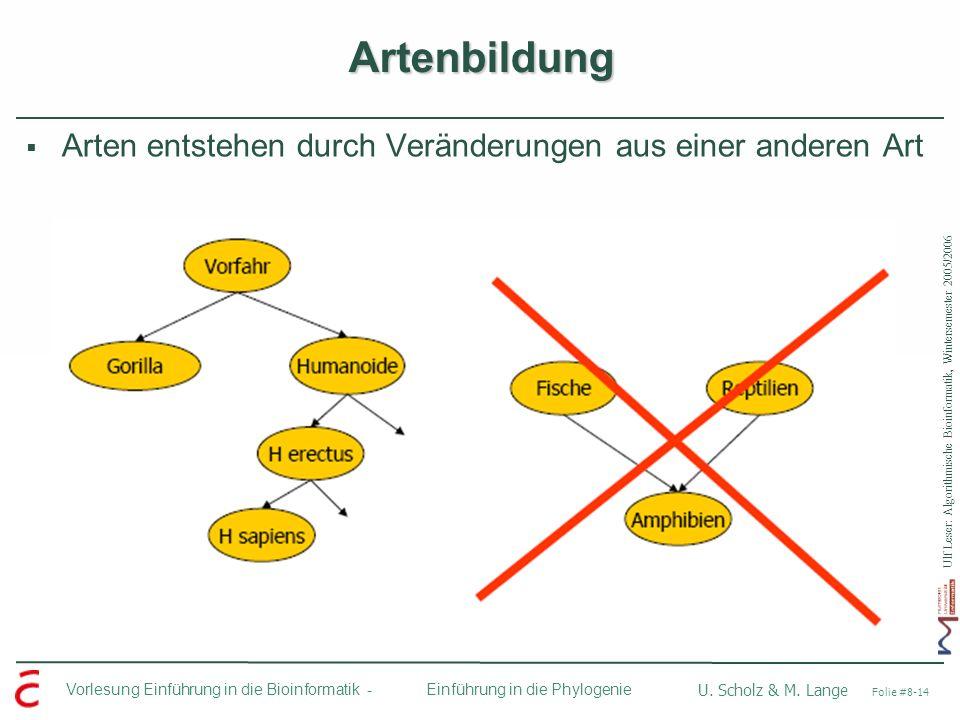 Ulf Leser: Algorithmische Bioinformatik, Wintersemester 2005/2006 Vorlesung Einführung in die Bioinformatik - U. Scholz & M. Lange Folie #8-14 Einführ