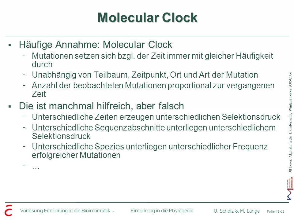 Ulf Leser: Algorithmische Bioinformatik, Wintersemester 2005/2006 Vorlesung Einführung in die Bioinformatik - U. Scholz & M. Lange Folie #8-16 Einführ