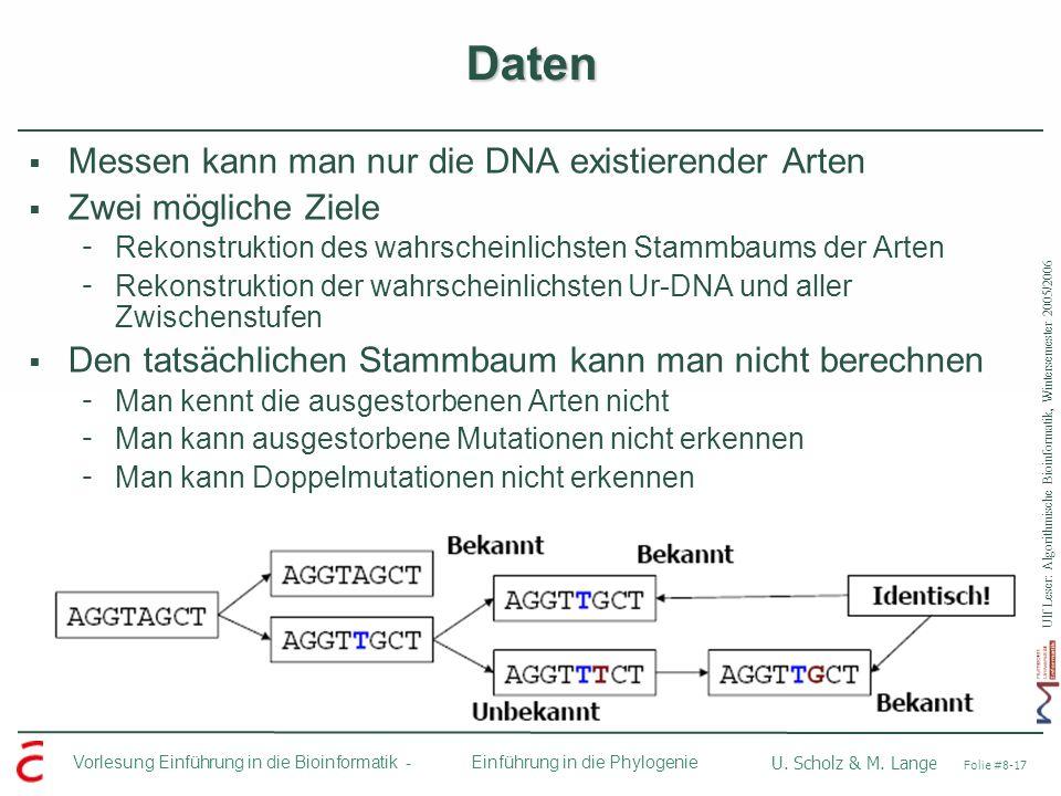 Ulf Leser: Algorithmische Bioinformatik, Wintersemester 2005/2006 Vorlesung Einführung in die Bioinformatik - U. Scholz & M. Lange Folie #8-17 Einführ