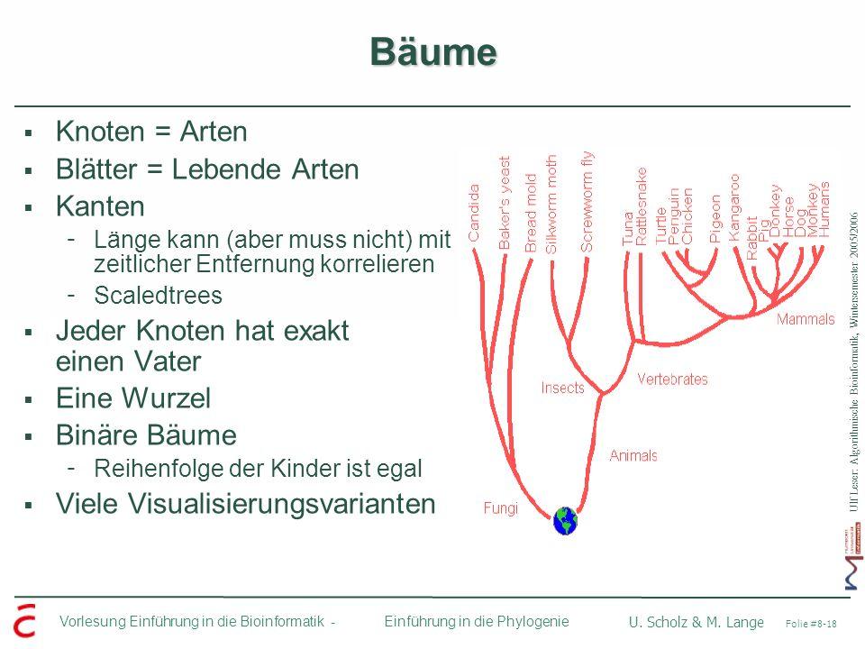 Ulf Leser: Algorithmische Bioinformatik, Wintersemester 2005/2006 Vorlesung Einführung in die Bioinformatik - U. Scholz & M. Lange Folie #8-18 Einführ