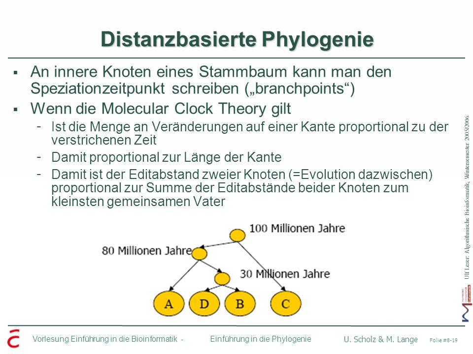 Ulf Leser: Algorithmische Bioinformatik, Wintersemester 2005/2006 Vorlesung Einführung in die Bioinformatik - U. Scholz & M. Lange Folie #8-19 Einführ