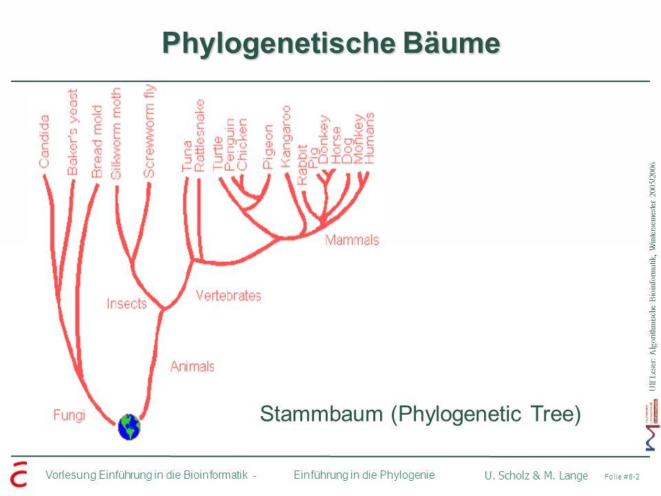 Ulf Leser: Algorithmische Bioinformatik, Wintersemester 2005/2006 Vorlesung Einführung in die Bioinformatik - U. Scholz & M. Lange Folie #8-2 Einführu