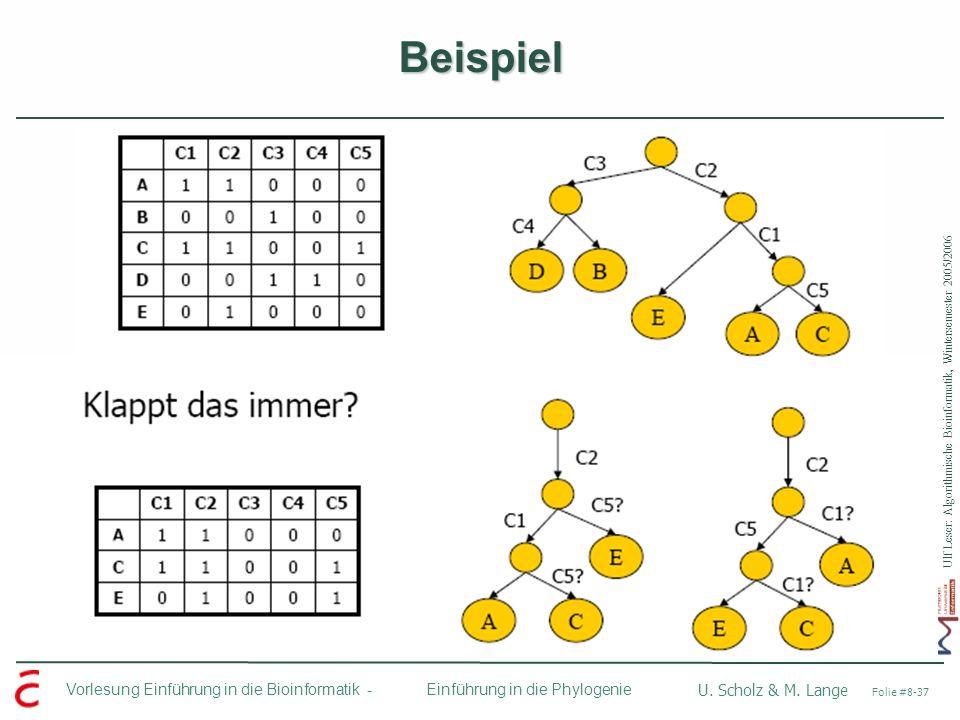 Ulf Leser: Algorithmische Bioinformatik, Wintersemester 2005/2006 Vorlesung Einführung in die Bioinformatik - U. Scholz & M. Lange Folie #8-37 Einführ