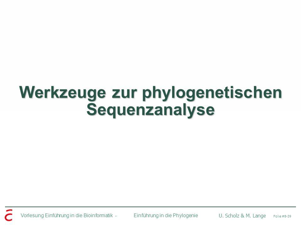 Vorlesung Einführung in die Bioinformatik - U. Scholz & M. Lange Folie #8-39 Einführung in die Phylogenie Werkzeuge zur phylogenetischen Sequenzanalys
