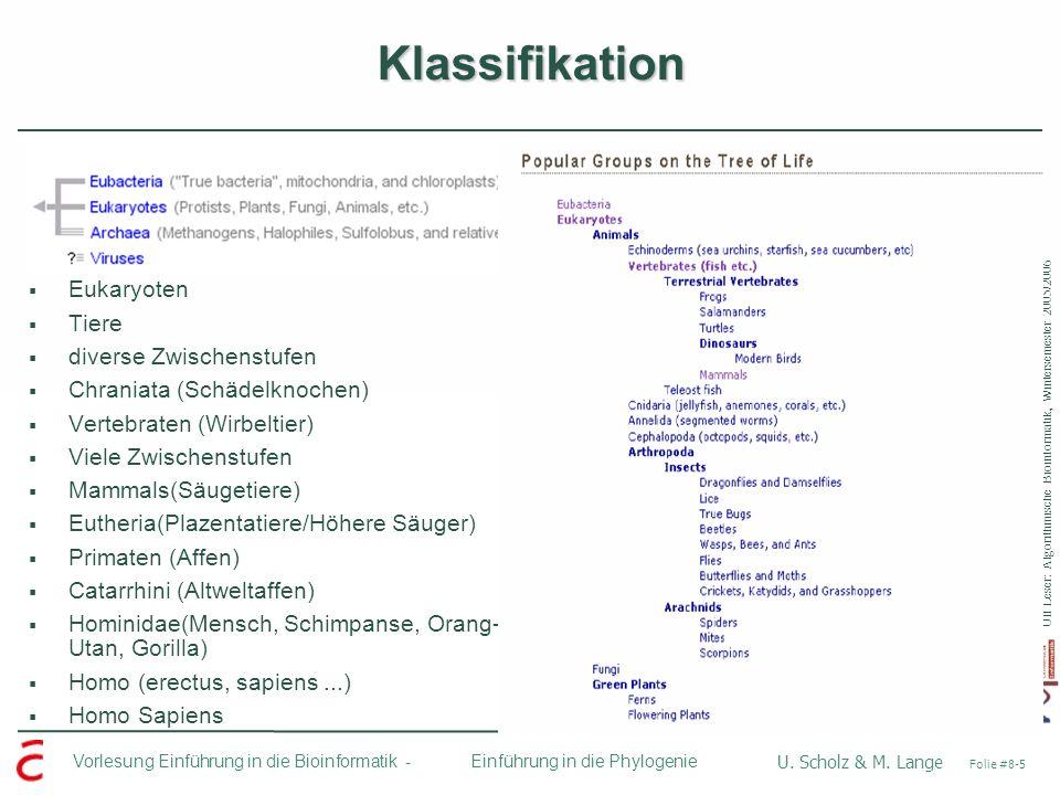 Ulf Leser: Algorithmische Bioinformatik, Wintersemester 2005/2006 Vorlesung Einführung in die Bioinformatik - U. Scholz & M. Lange Folie #8-5 Einführu