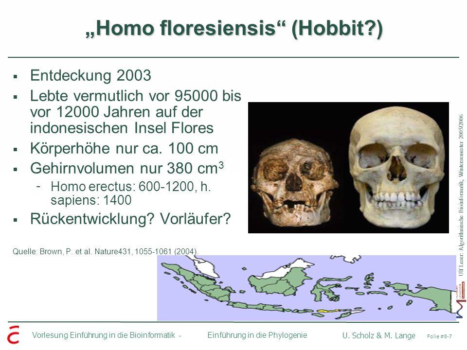Ulf Leser: Algorithmische Bioinformatik, Wintersemester 2005/2006 Vorlesung Einführung in die Bioinformatik - U. Scholz & M. Lange Folie #8-7 Einführu