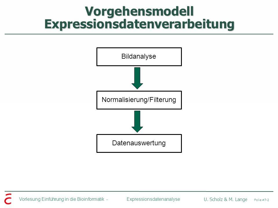 Vorlesung Einführung in die Bioinformatik - U. Scholz & M. Lange Folie #7-2 Expressionsdatenanalyse Vorgehensmodell Expressionsdatenverarbeitung Bilda