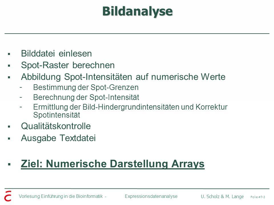 Vorlesung Einführung in die Bioinformatik - U. Scholz & M. Lange Folie #7-3 Expressionsdatenanalyse Bildanalyse Bilddatei einlesen Spot-Raster berechn