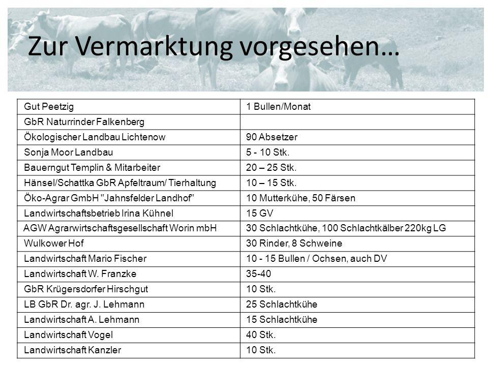 Zur Vermarktung vorgesehen… Gut Peetzig1 Bullen/Monat GbR Naturrinder Falkenberg Ökologischer Landbau Lichtenow90 Absetzer Sonja Moor Landbau5 - 10 St