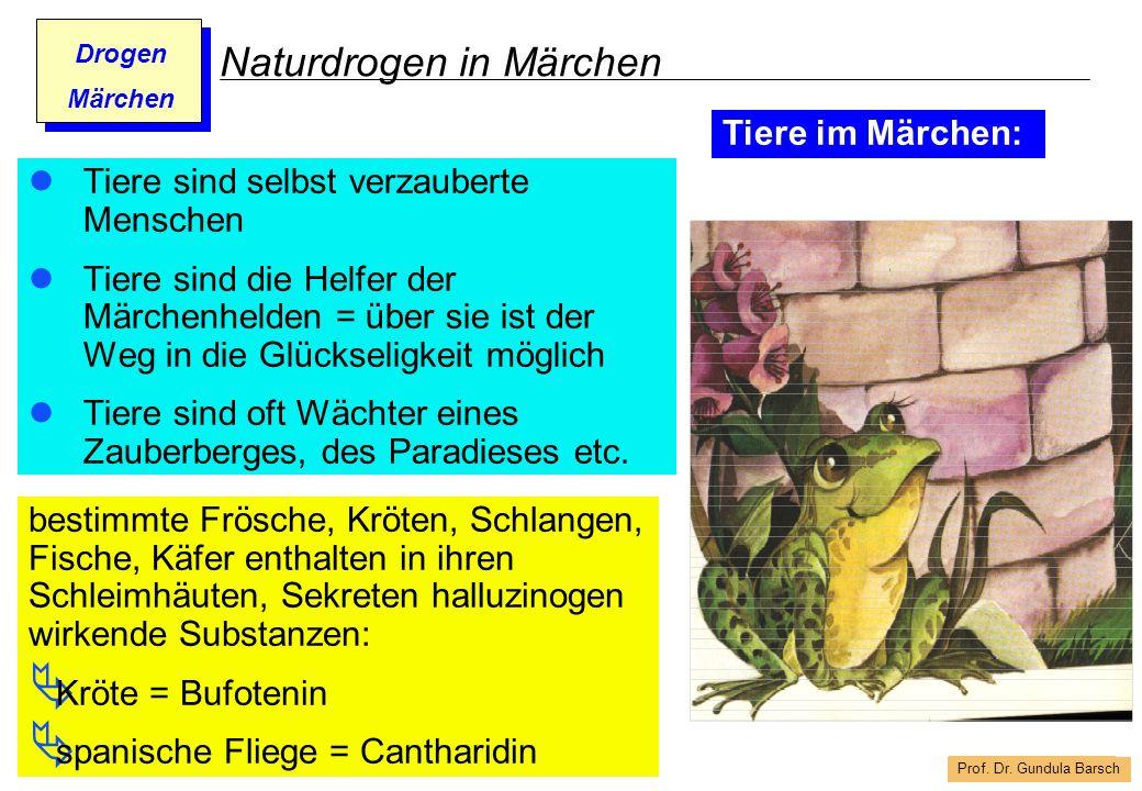 Prof. Dr. Gundula Barsch Drogen Märchen Naturdrogen in Märchen Tiere sind selbst verzauberte Menschen Tiere sind die Helfer der Märchenhelden = über s