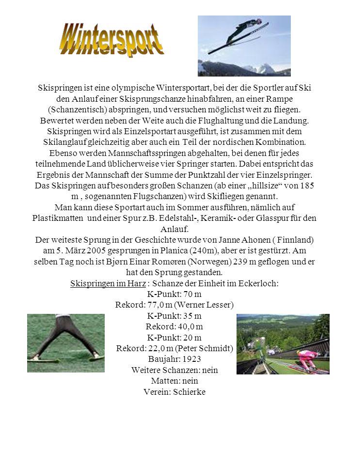 Skispringen ist eine olympische Wintersportart, bei der die Sportler auf Ski den Anlauf einer Skisprungschanze hinabfahren, an einer Rampe (Schanzenti
