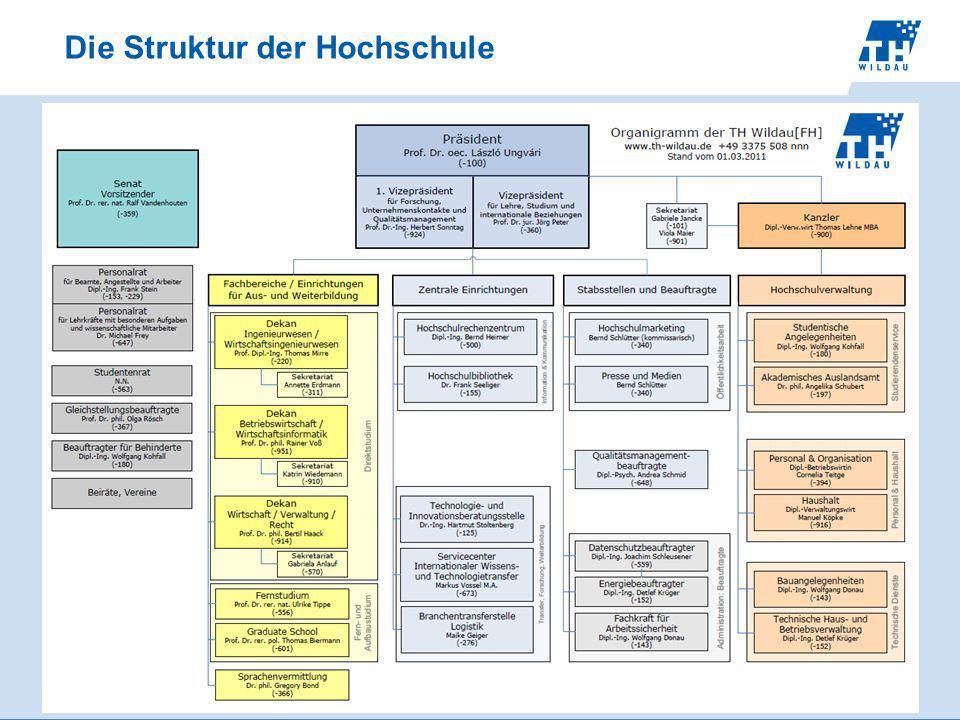 Die Struktur der Hochschule