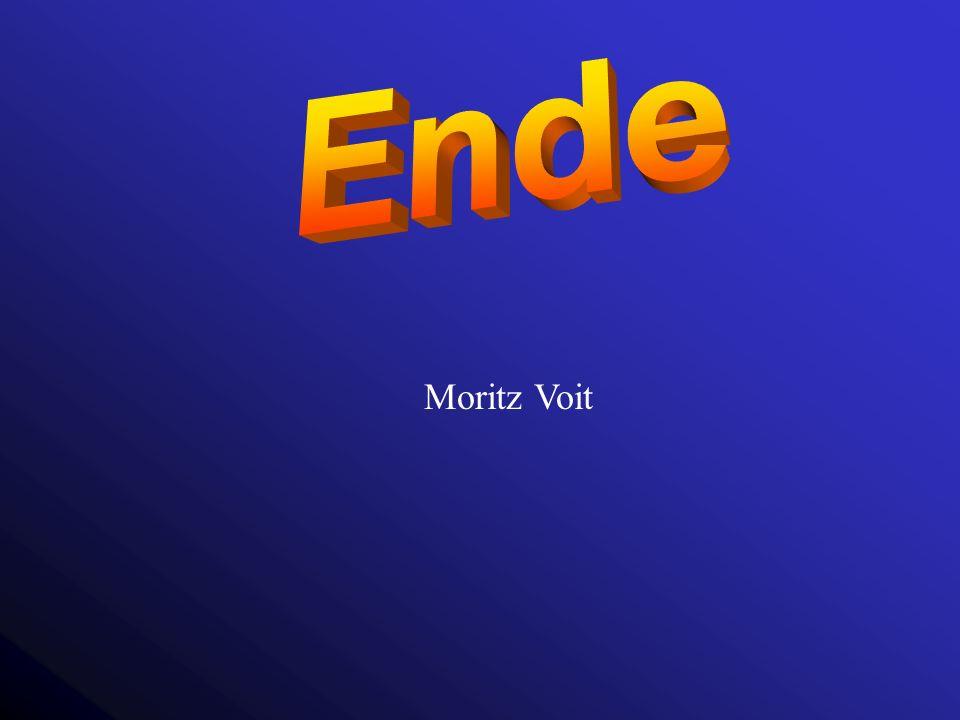 Moritz Voit
