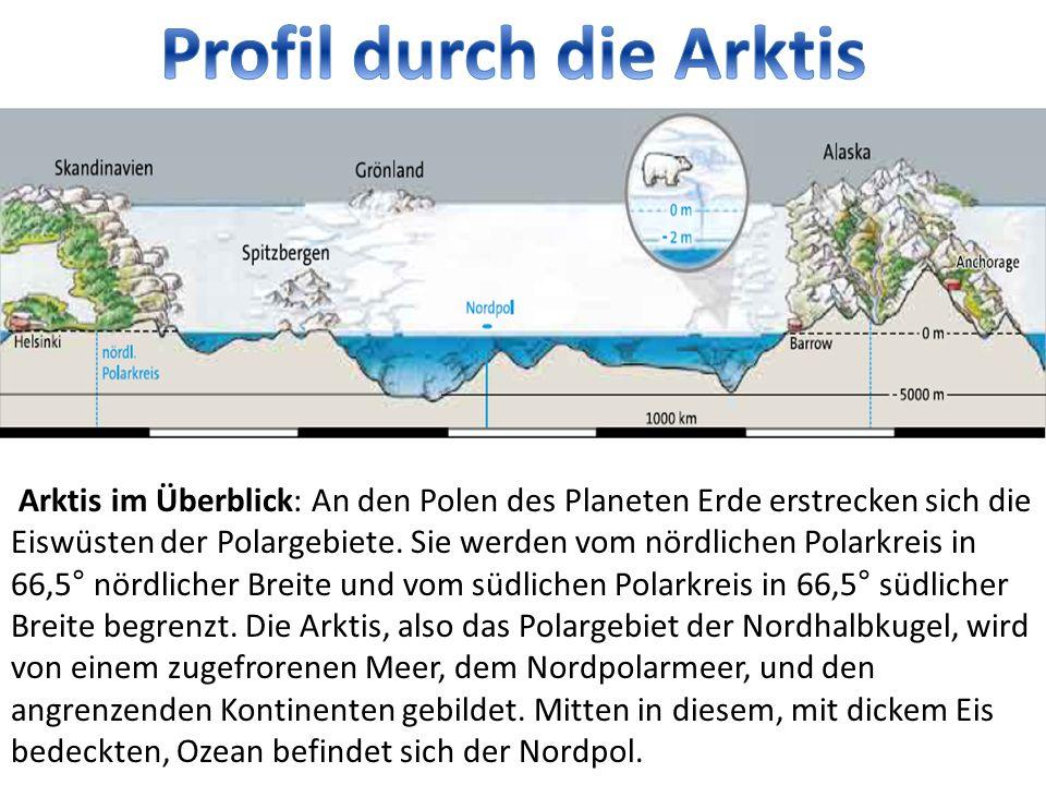 Arktis im Überblick: An den Polen des Planeten Erde erstrecken sich die Eiswüsten der Polargebiete.