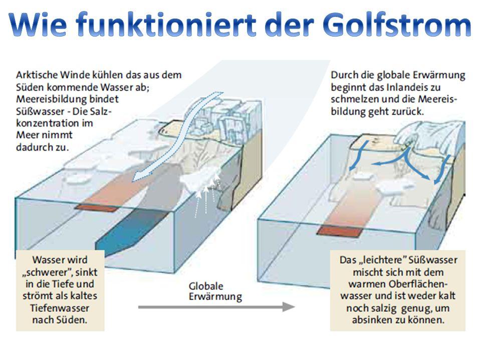 Der Golfstrom ist eine Meeresströmung im Atlantik, die vorrangig durch die Passatwinde über den Atlantik in Richtung höhere Breiten bewegt wird.