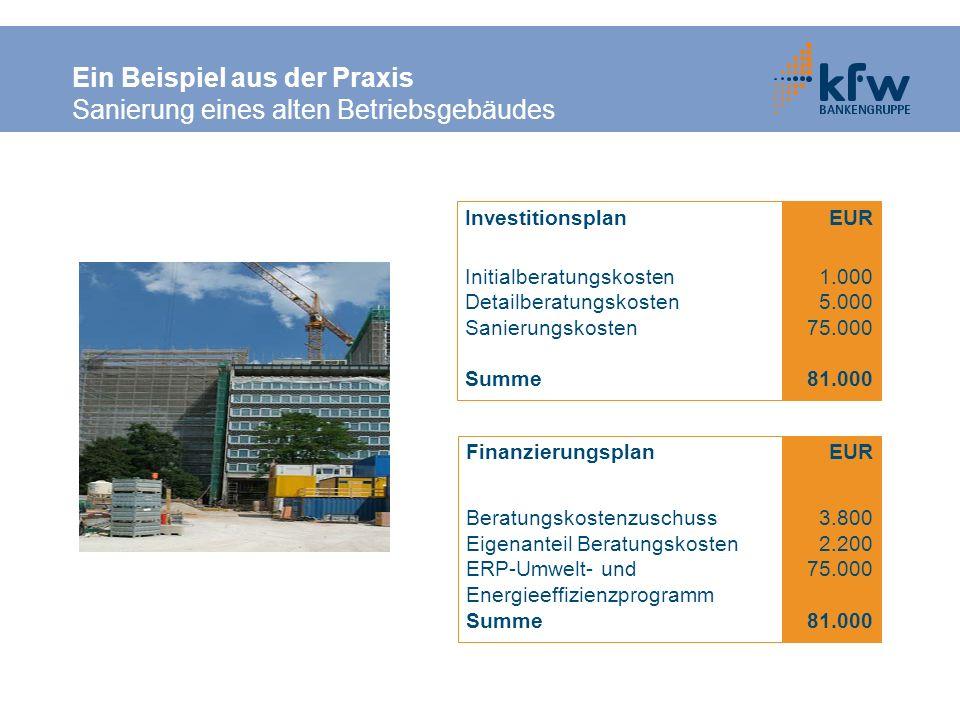 Ein Beispiel aus der Praxis Sanierung eines alten Betriebsgebäudes Investitionsplan Initialberatungskosten Detailberatungskosten Sanierungskosten Summ