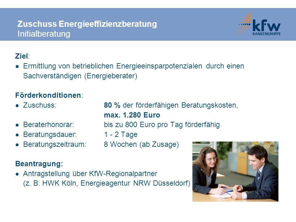 Zuschuss Energieeffizienzberatung Initialberatung Ziel: Ermittlung von betrieblichen Energieeinsparpotenzialen durch einen Sachverständigen (Energiebe