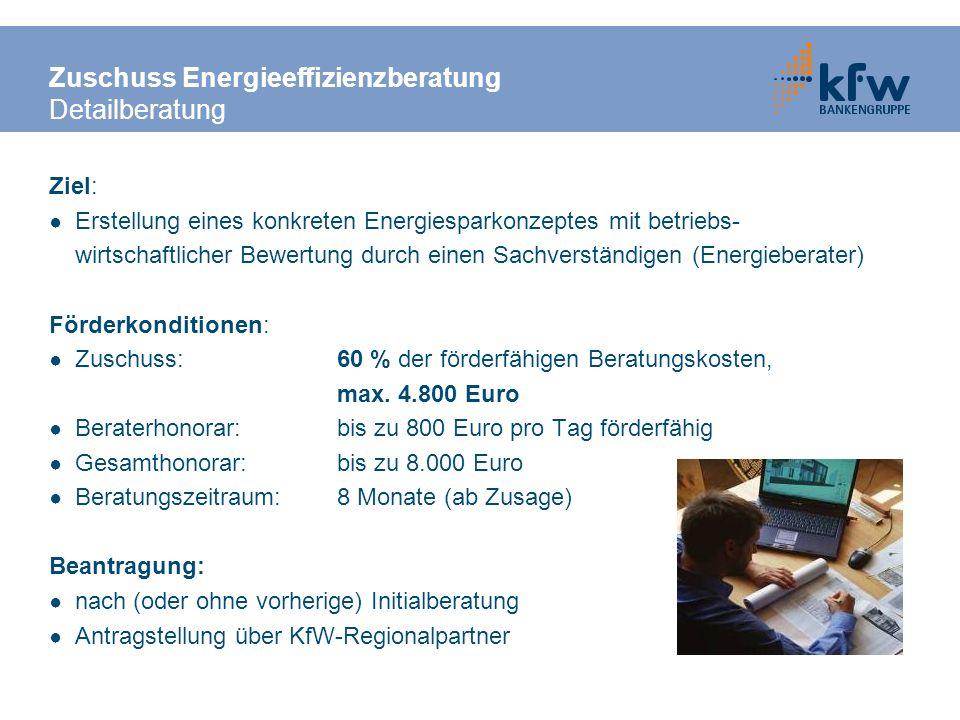 Zuschuss Energieeffizienzberatung Detailberatung Ziel: Erstellung eines konkreten Energiesparkonzeptes mit betriebs- wirtschaftlicher Bewertung durch