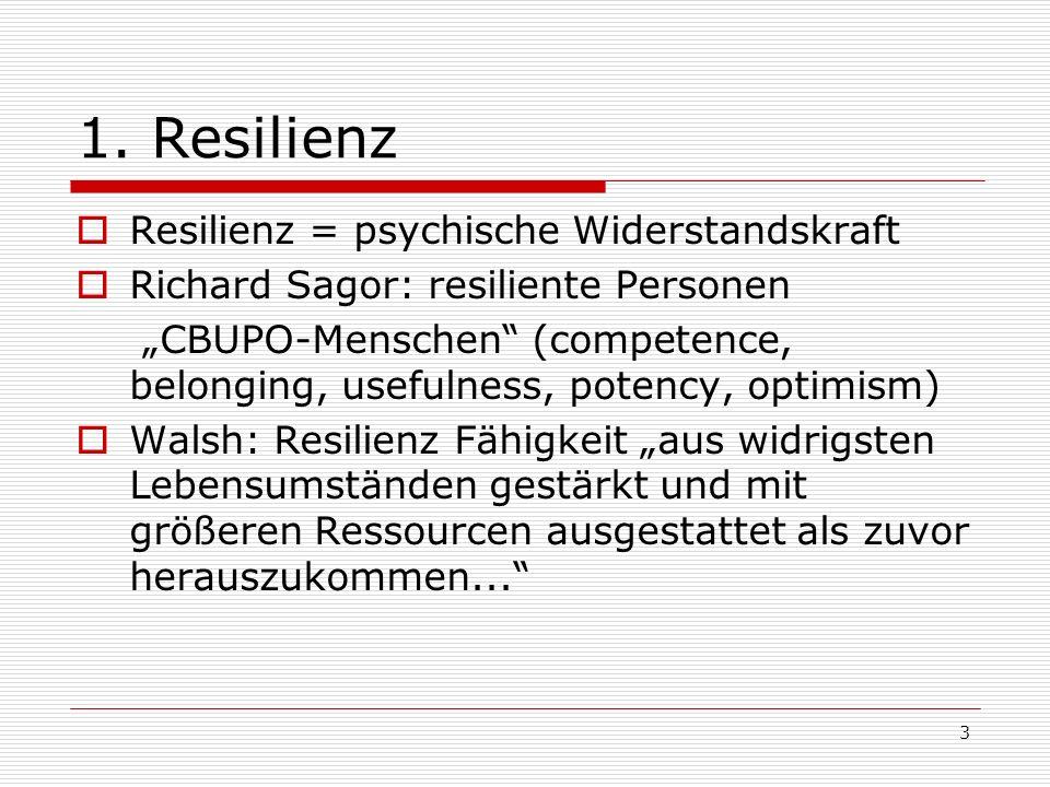 4 Resilienz Persönlichkeitsmerkmal, das mit folgenden Merkmalen korrespondiert: Eigenständigkeit, Unabhängigkeit, Bestimmtheit, Unbesiegbarkeit, Beherrschung, Findigkeit, Ausdauer, Akzeptanz dem Leben und der eigenen Person gegenüber, Anpassungsbereitschaft, Balance und Flexibilität, Fähigkeit zur Perspektivübernahme