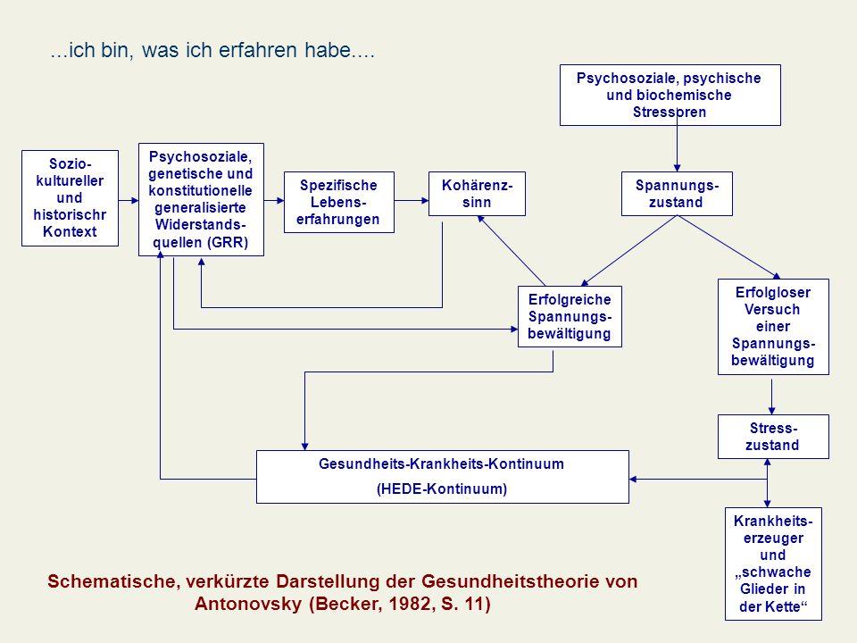 Sozio- kultureller und historischr Kontext Psychosoziale, genetische und konstitutionelle generalisierte Widerstands- quellen (GRR) Spezifische Lebens