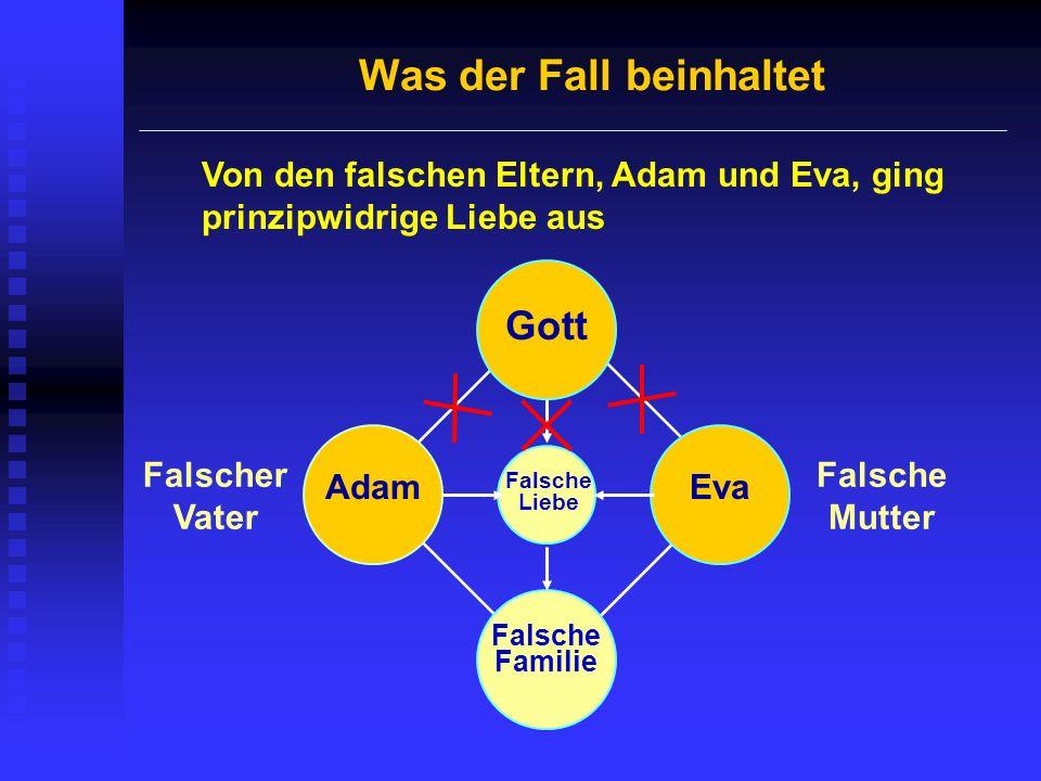 Was der Fall beinhaltet Von den falschen Eltern, Adam und Eva, ging prinzipwidrige Liebe aus Gott Falsche Liebe Falsche Familie Falscher Vater Falsche