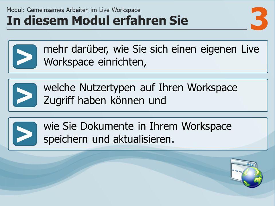 3 >> welche Nutzertypen auf Ihren Workspace Zugriff haben können und wie Sie Dokumente in Ihrem Workspace speichern und aktualisieren. In diesem Modul