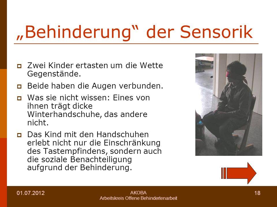 01.07.2012 AKOBA Arbeitskreis Offene Behindertenarbeit 18 Behinderung der Sensorik Zwei Kinder ertasten um die Wette Gegenstände.