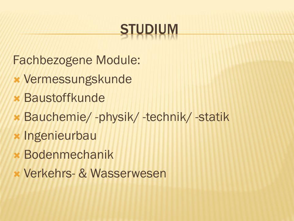 Fachbezogene Module: Vermessungskunde Baustoffkunde Bauchemie/ -physik/ -technik/ -statik Ingenieurbau Bodenmechanik Verkehrs- & Wasserwesen