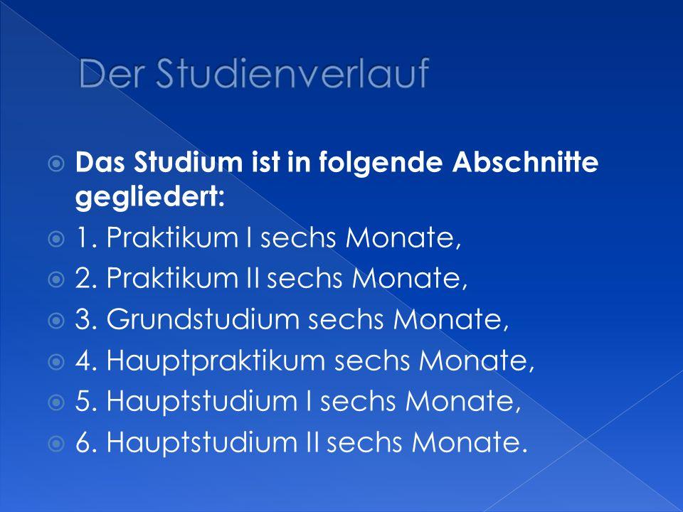 Das Studium ist in folgende Abschnitte gegliedert: 1. Praktikum I sechs Monate, 2. Praktikum II sechs Monate, 3. Grundstudium sechs Monate, 4. Hauptpr