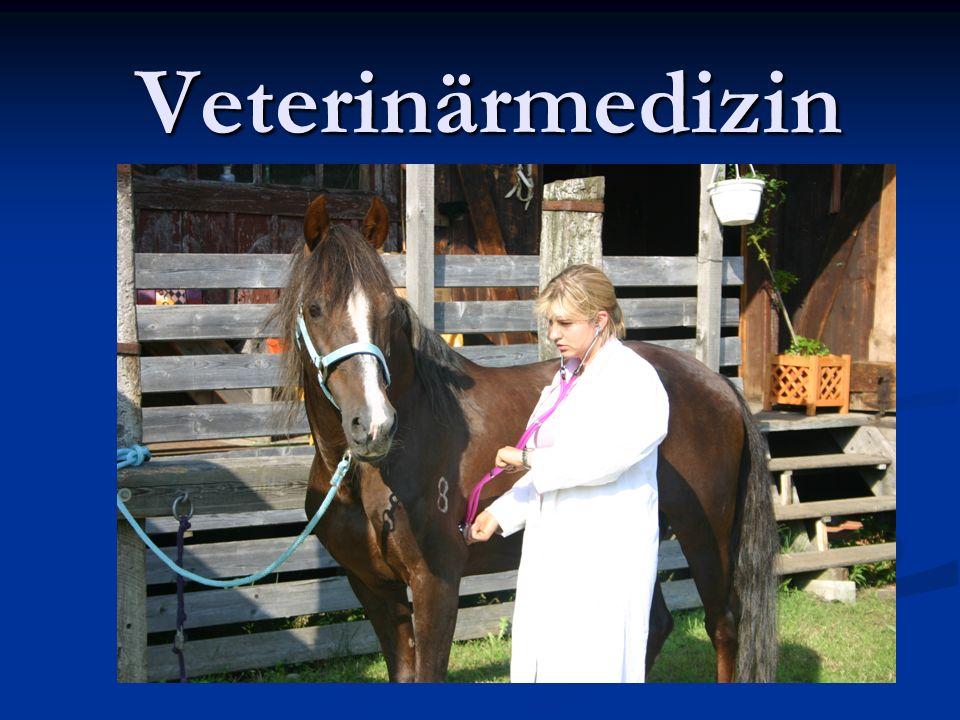 Veterinärmedizin