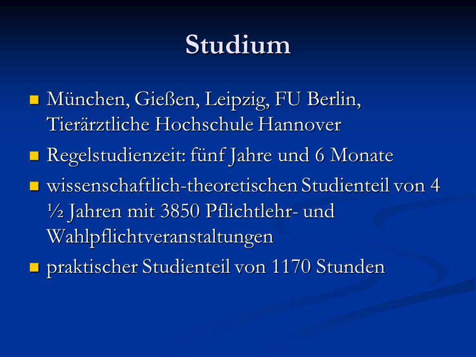 Studium München, Gießen, Leipzig, FU Berlin, Tierärztliche Hochschule Hannover München, Gießen, Leipzig, FU Berlin, Tierärztliche Hochschule Hannover