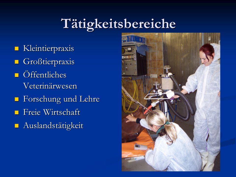 Tätigkeitsbereiche Kleintierpraxis Kleintierpraxis Großtierpraxis Großtierpraxis Öffentliches Veterinärwesen Öffentliches Veterinärwesen Forschung und