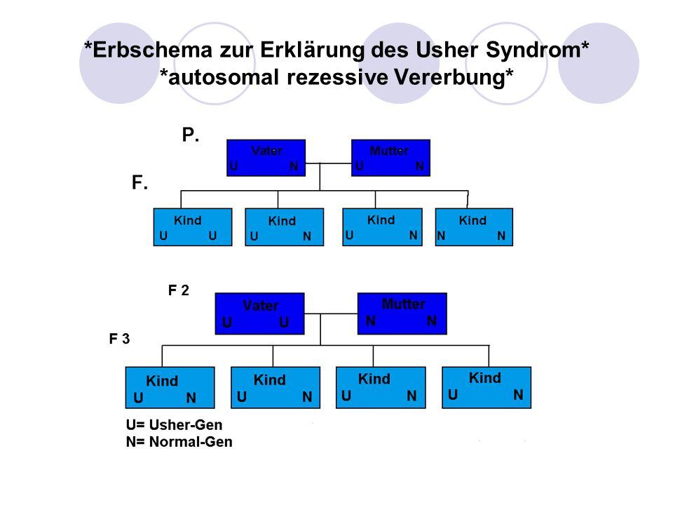 *Erbschema zur Erklärung des Usher Syndrom* *autosomal rezessive Vererbung*