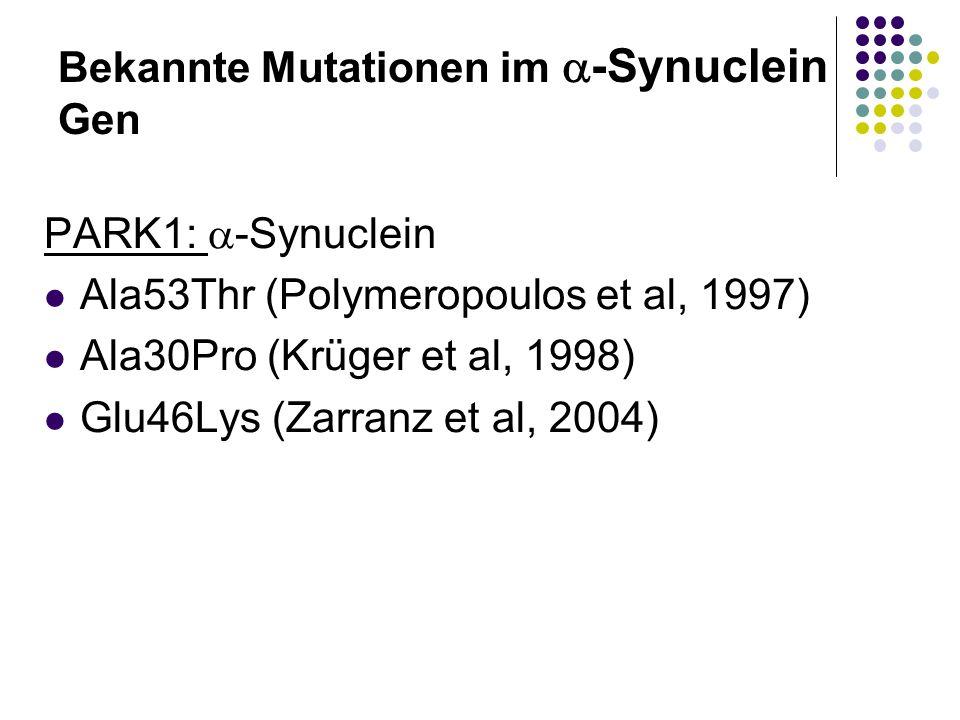 Bekannte Mutationen im -Synuclein Gen PARK1: -Synuclein Ala53Thr (Polymeropoulos et al, 1997) Ala30Pro (Krüger et al, 1998) Glu46Lys (Zarranz et al, 2